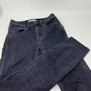 Madewell 10' High Rise Skinny Jeans 25 DR